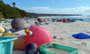 legszennyezettebb sziget